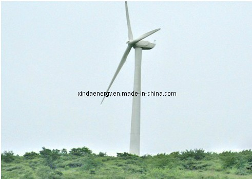 50kw Wind Turbine Generator with CE Certificate