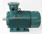 YB2 (63 ~ 355) explosion proof three phase coal motor