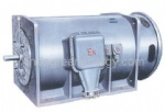 YB series medium high voltage explosion proof three phase motor (H560 ~800)