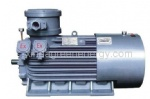 YB series of high voltage explosion-proof three phase crusher motor (H355 ~ 450)