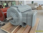 Micro Hydro Power Water Turbine Permanent Magnet Generator (1kw-1000kw) 60hz