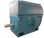 3-phase Asynchronous Motor Series YTM/YHP/YMPS for Coal Mill